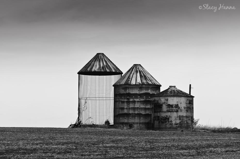 Rural Illinois-5.jpg