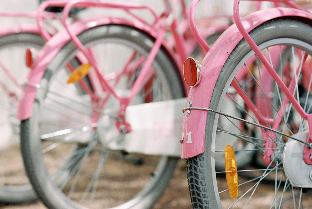 Pink Bicycles-02.jpg