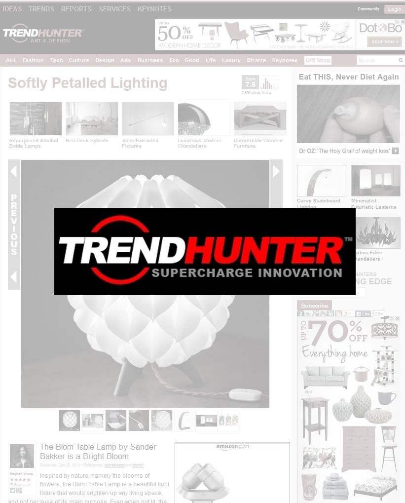 trendhunter overlay.jpg