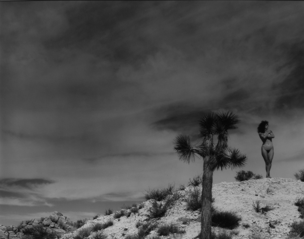 Jonette Standing by Joshua Tree.jpg