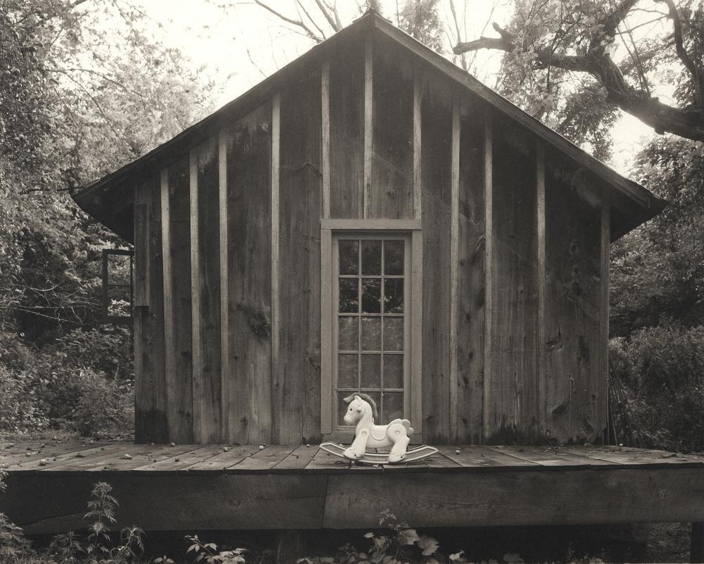 Carl's Cabin.jpg