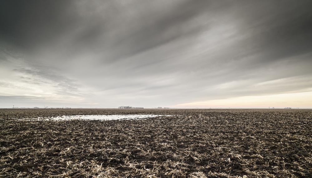 Farmland-001.jpg