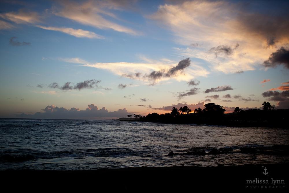 kauai_web-11.jpg