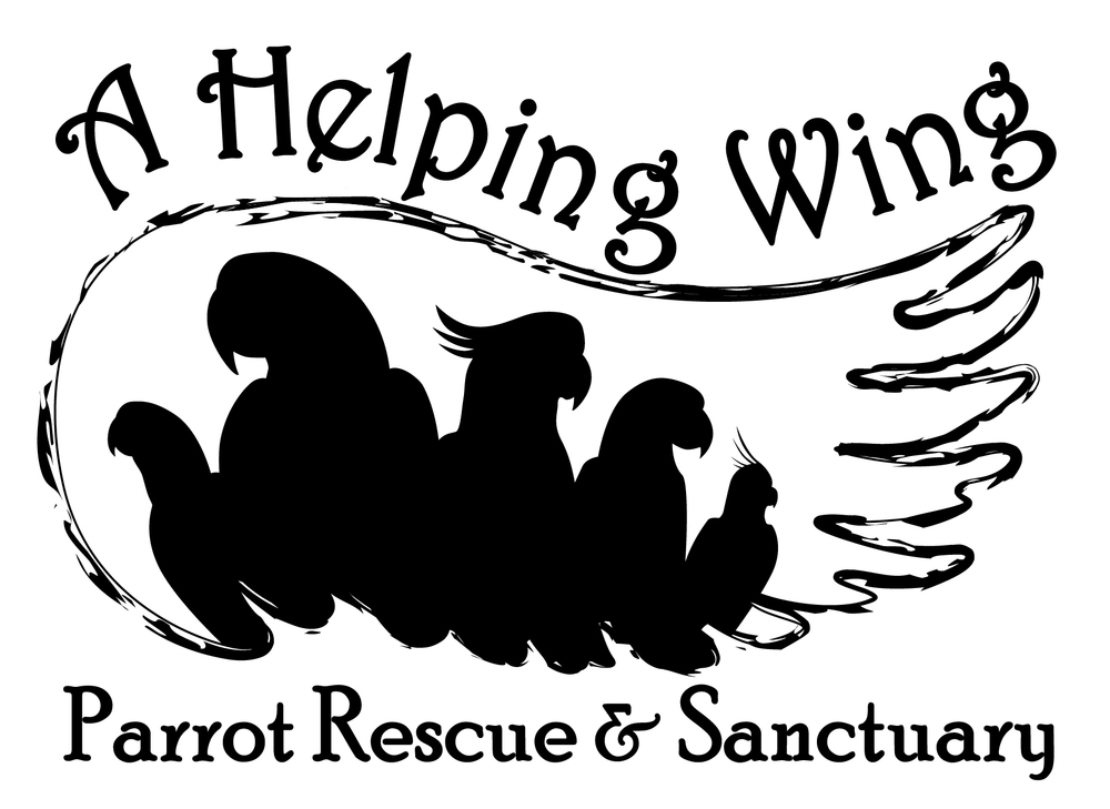 A Helping Wing Parrot Rescue
