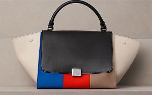 Sophia Lulu's handbag
