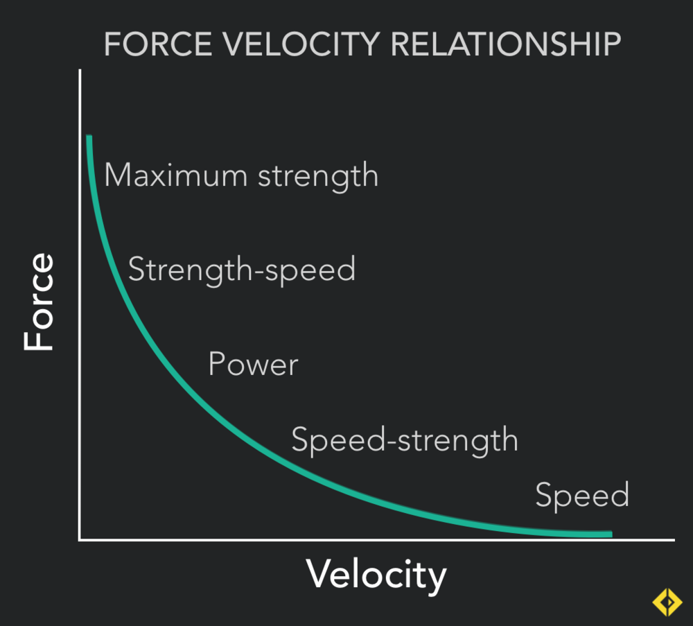 """Surfing the Curve"" - Training should work all movement velocities for all round athletic development"