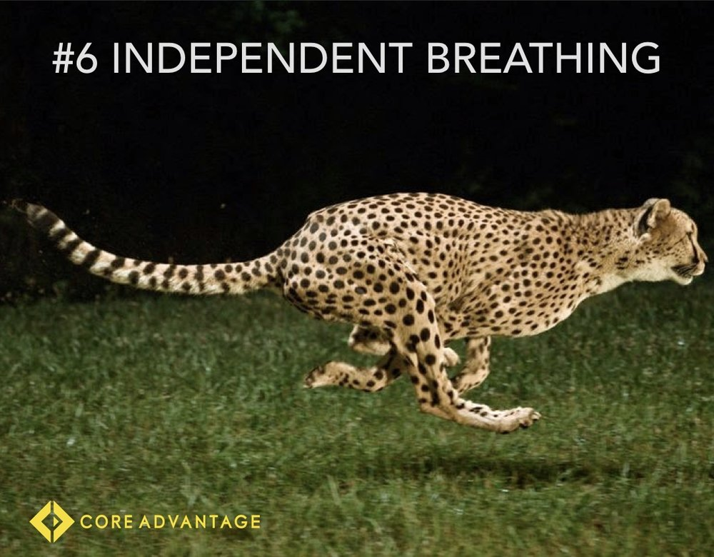 #6 Independent Breathing