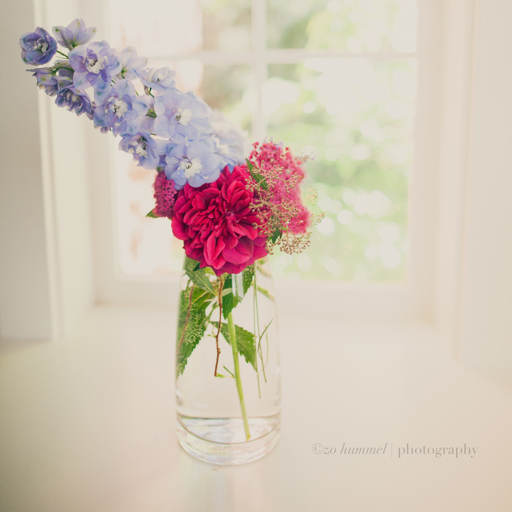 Delphinium, Rose, and Lavender
