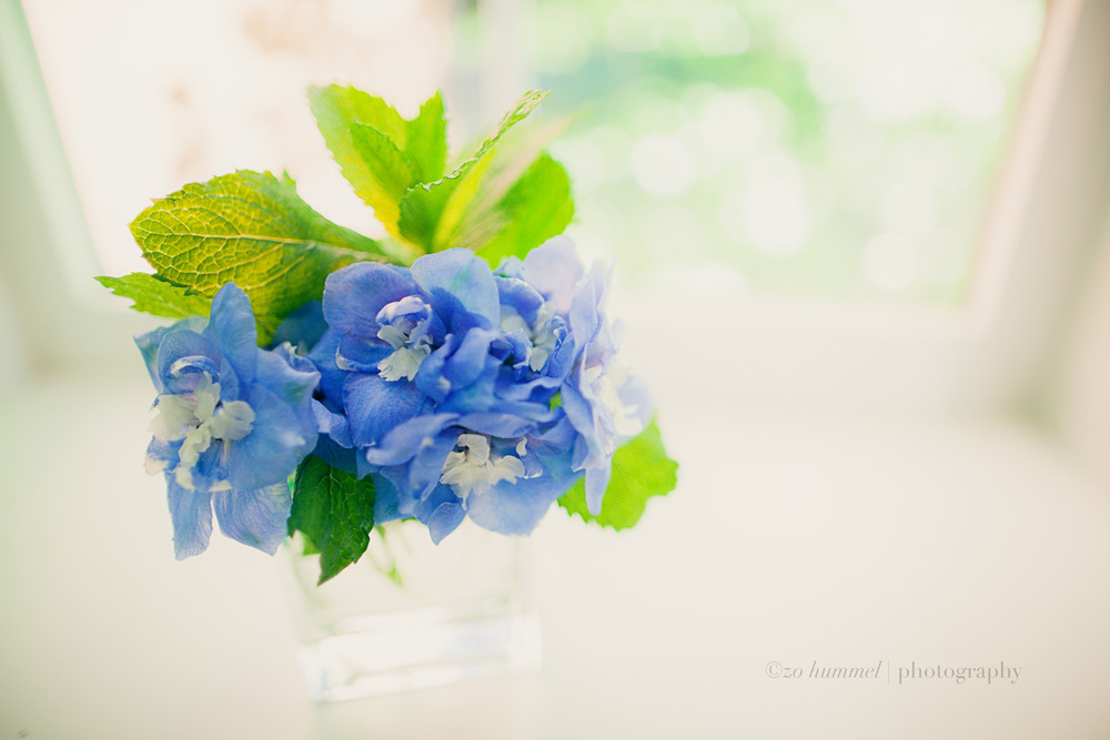 Delphinium and mint.