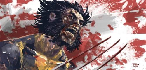 Wolverine by Germán Peralta
