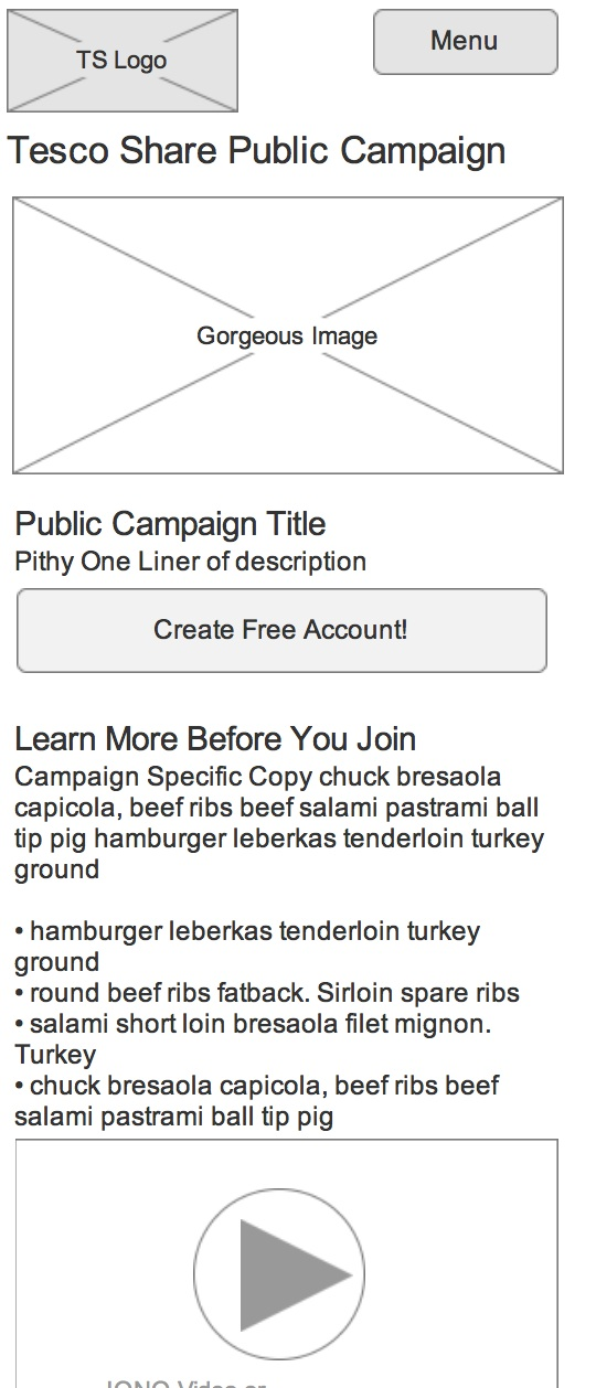 Wireframe for Public Campaign View