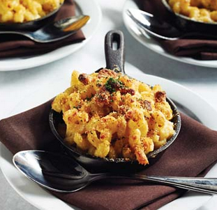 Mac & Four Cheese Gratin
