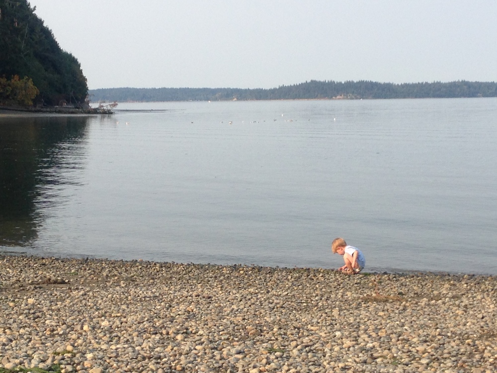 """searching for """"crabbies"""" - his favorite part of the day."""