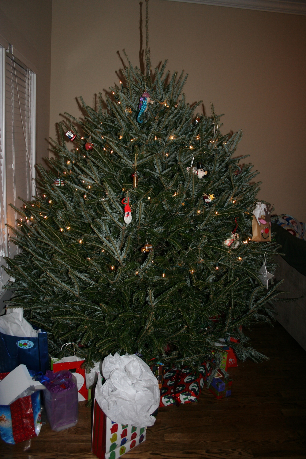 2005 - While Josh was in Iraq I picked up a fresh cut tree at a local tree farm in TN. I threw the only lights and ornaments I had on it and called it good. Looking back now it was a bit sad looking.