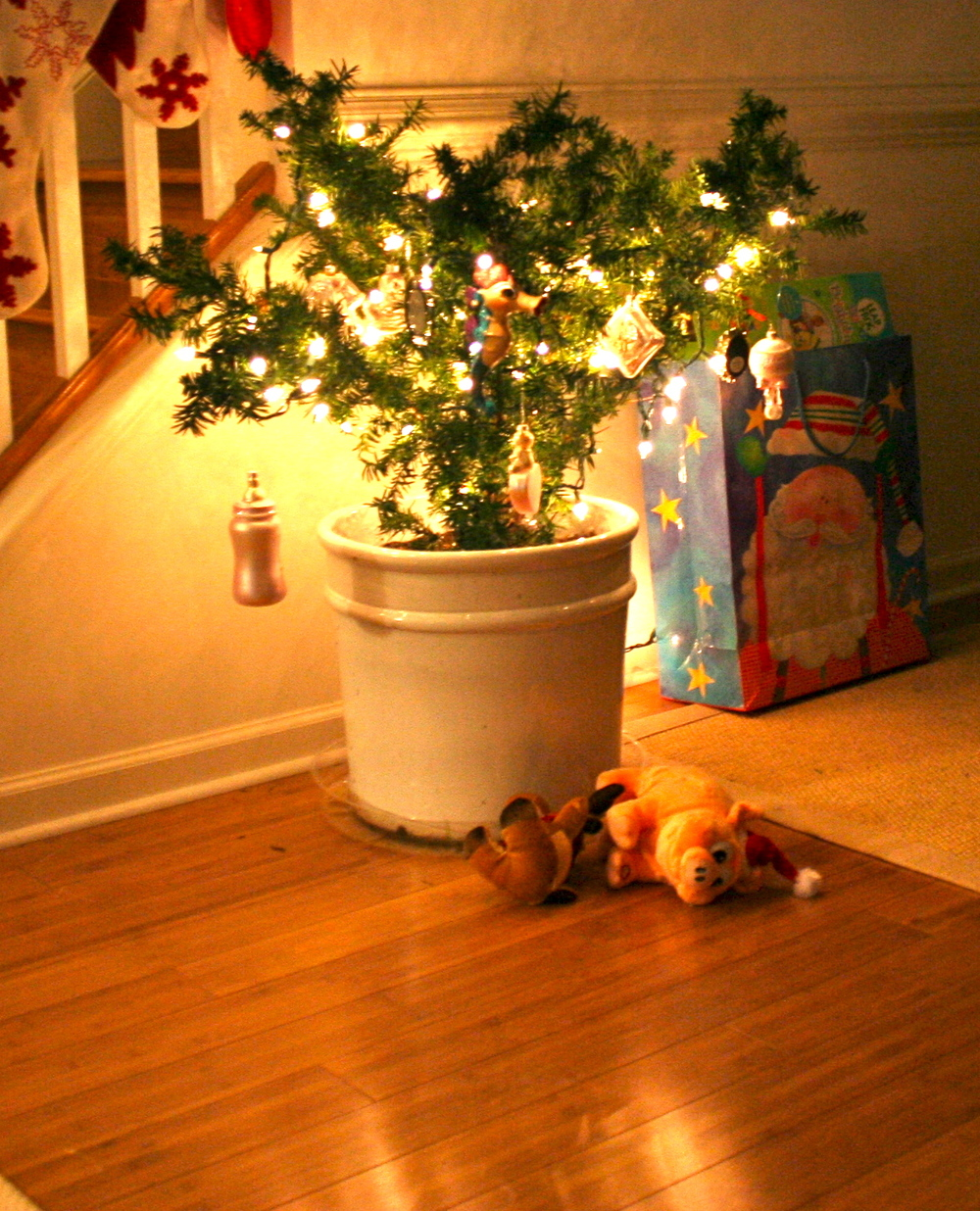 2006-2008 - We spent Christmas in Nebraska so our little evergreen served as our tree those years. This was Audrey's first tree.