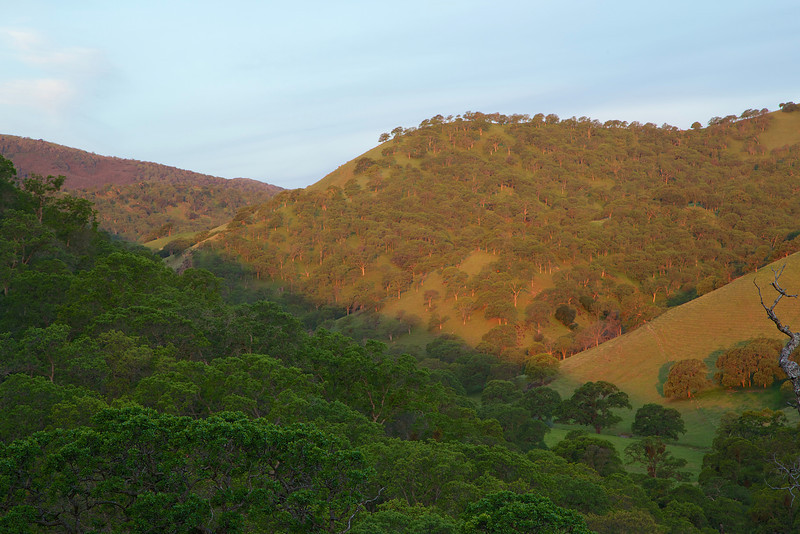 Dawn light reaches the far hill.