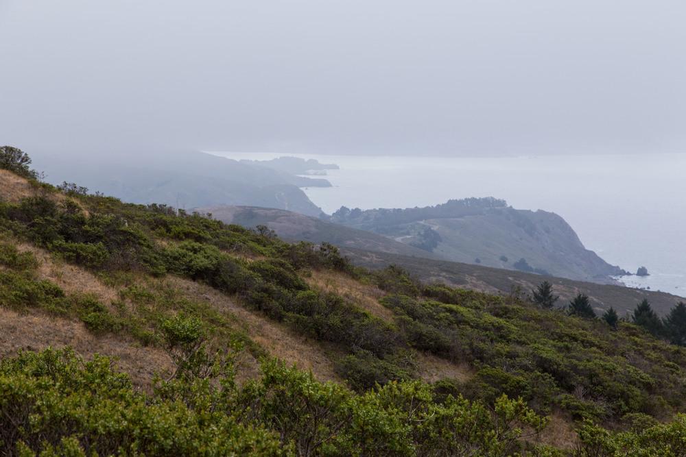 Dipsea Trail_-160.jpg