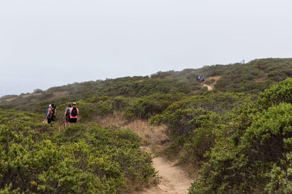 Dipsea Trail_-195.jpg