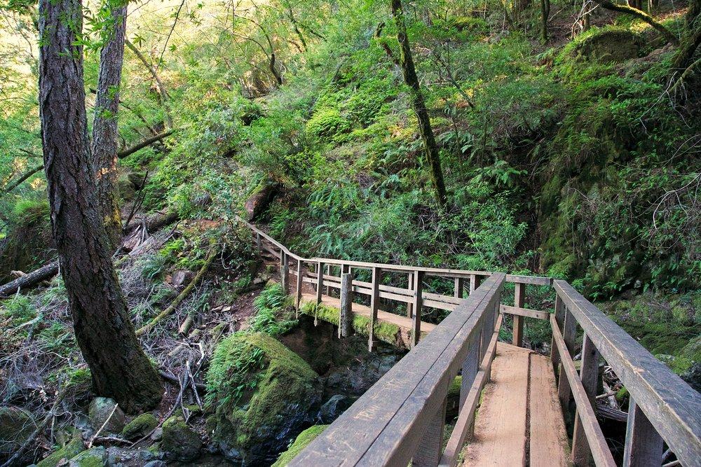 Cataract Trail 1 17 13 43.jpg