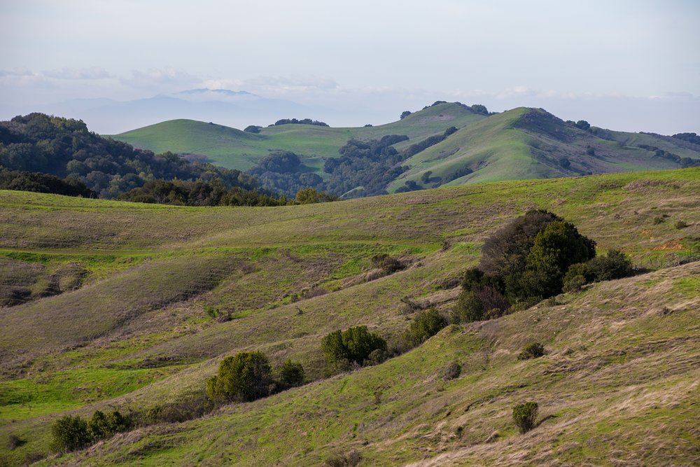 Oursan Trail-16.jpg