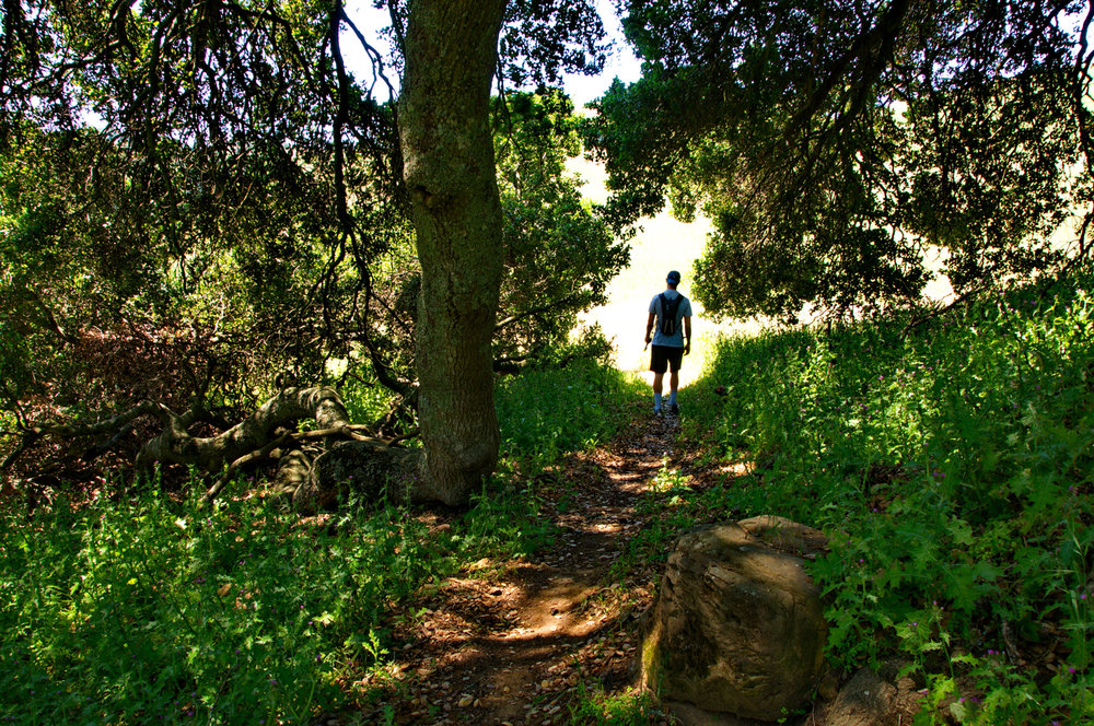 Mount diablo state park Tassajara-17.jpg
