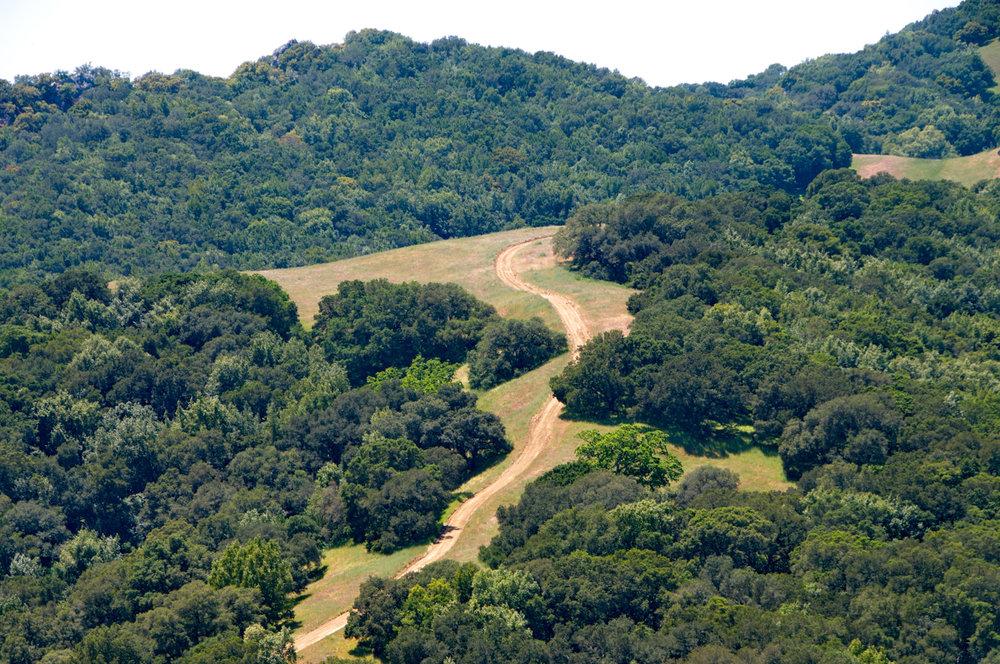 Mount diablo state park Tassajara-22.jpg