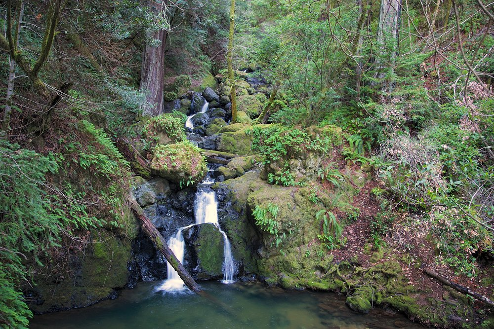 Cataract Trail - Marin Watershed