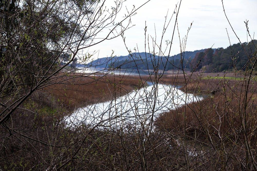 Old San Pablo Trail - San Pablo Reservoir