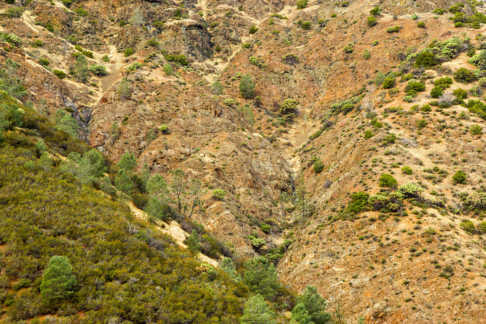 Back Creek Trail Mount Diablo State Park-3.jpg