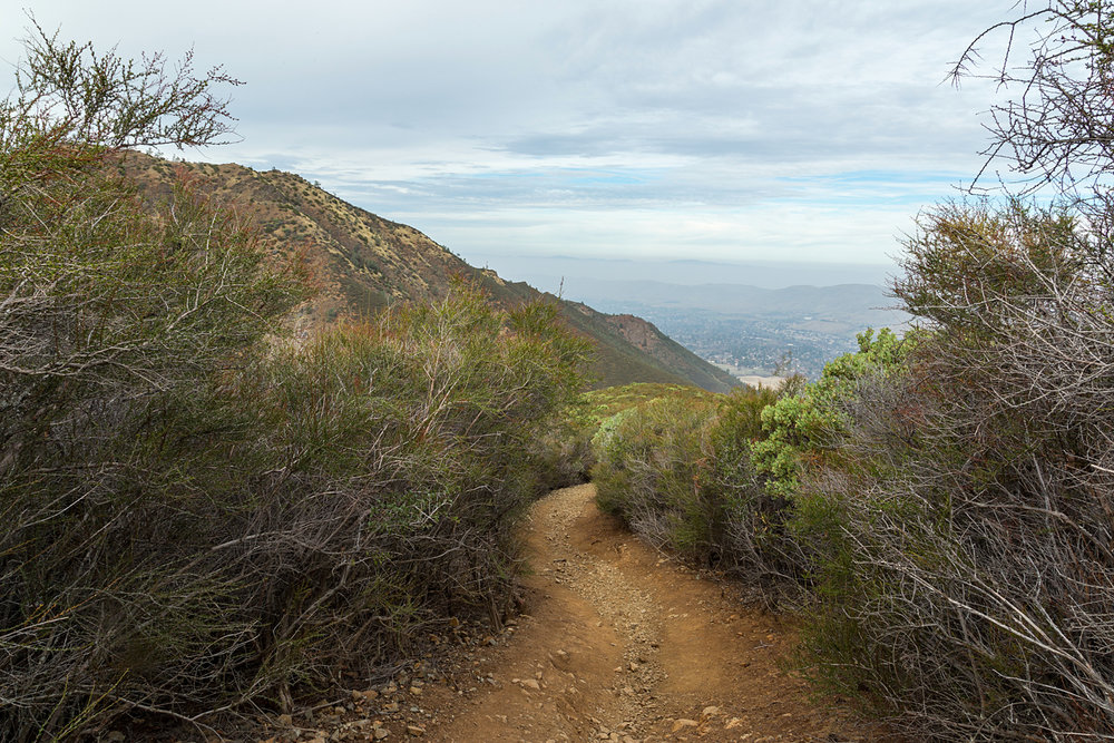Back Creek Trail Mount Diablo State Park-7.jpg