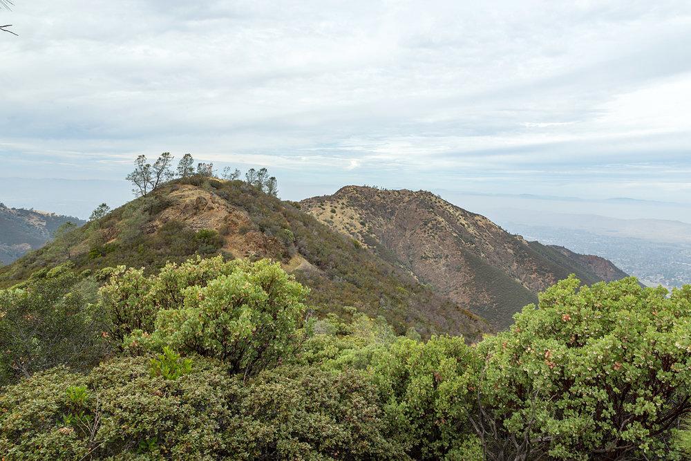Back Creek Trail Mount Diablo State Park-13.jpg