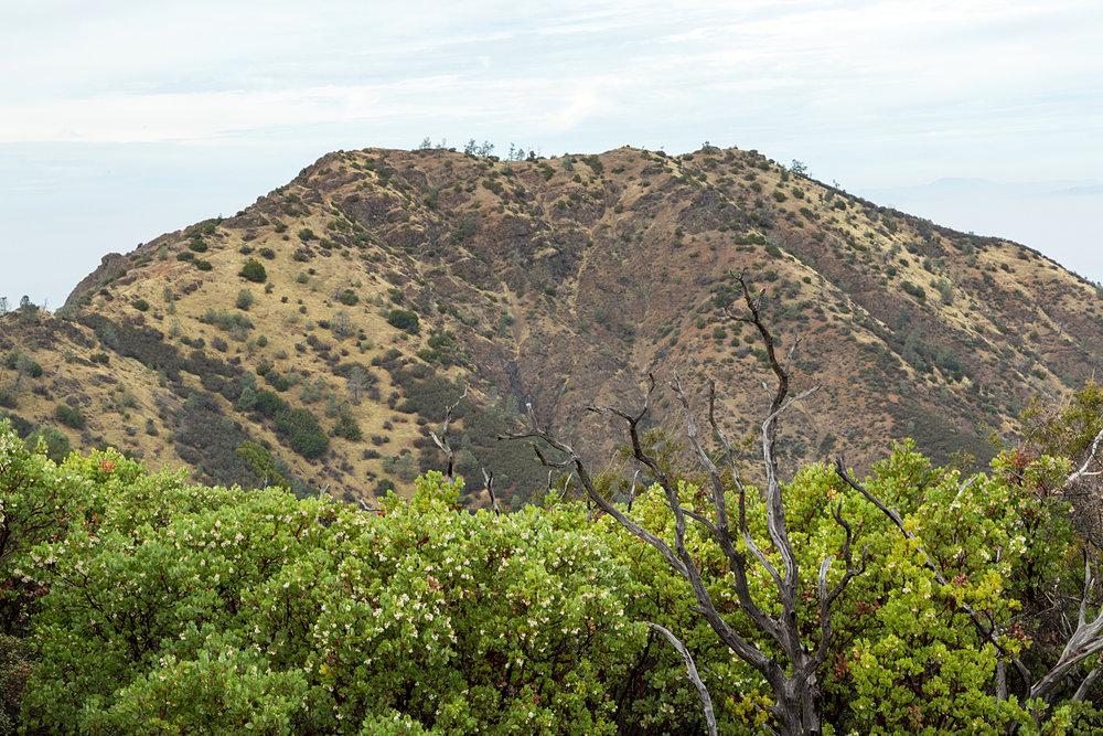 Back Creek Trail Mount Diablo State Park-14.jpg