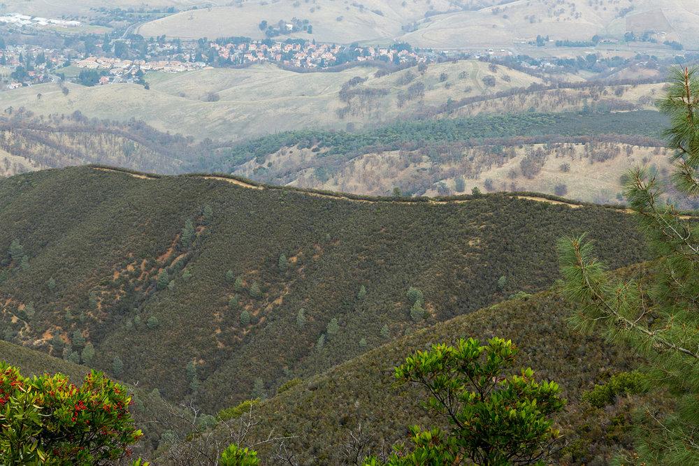 Back Creek Trail Mount Diablo State Park-15.jpg