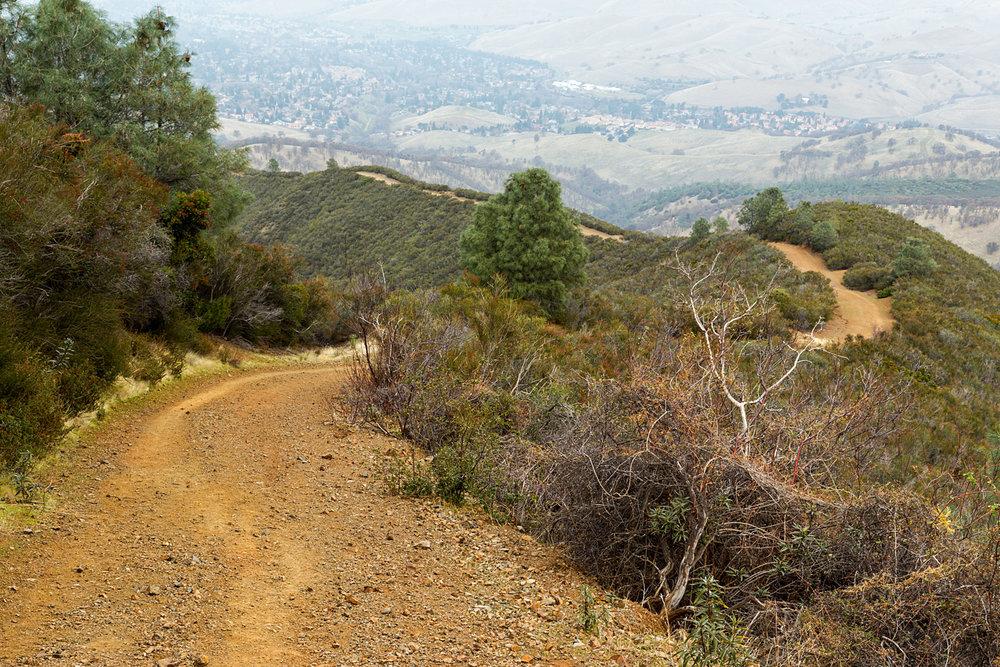 Back Creek Trail Mount Diablo State Park-19.jpg