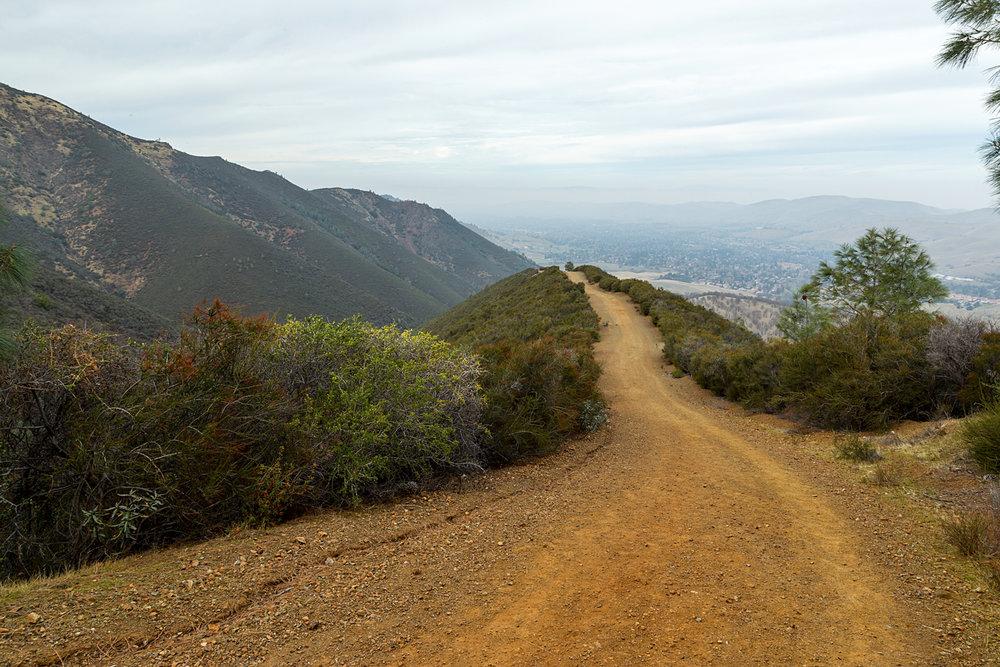 Back Creek Trail Mount Diablo State Park-20.jpg