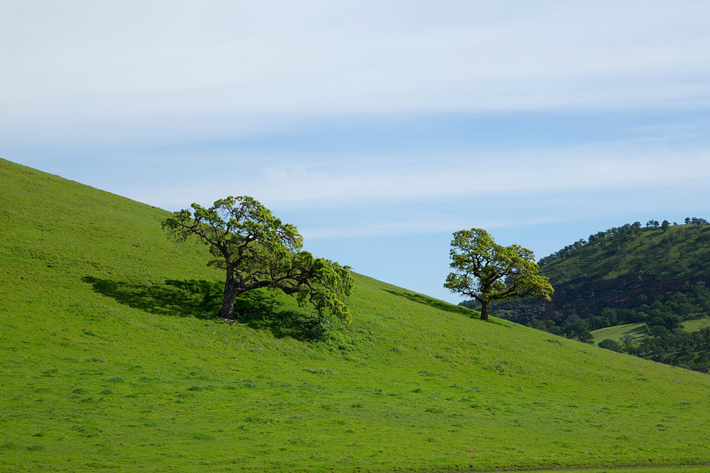 Round Valley Miwok Trail-19.jpg