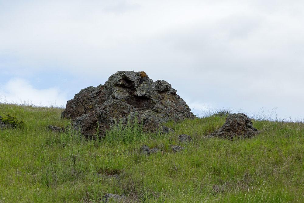mount diablo state park pine canyon-19.jpg