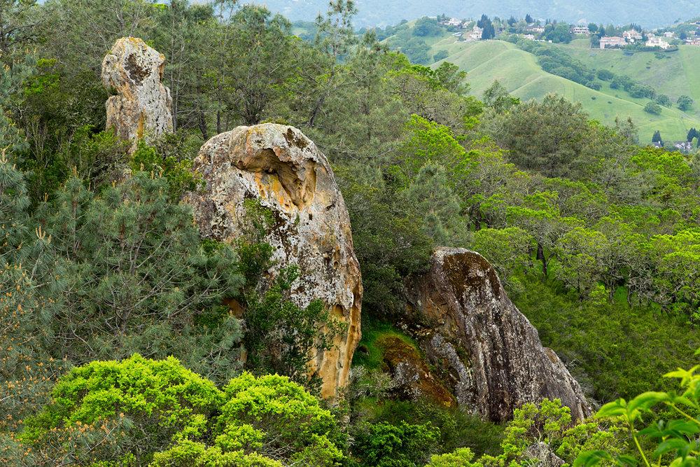 mount diablo state park pine canyon-29.jpg