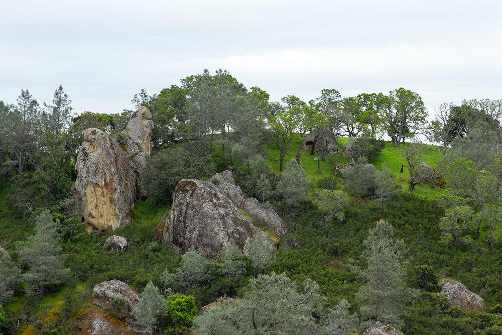 mount diablo state park pine canyon.jpg