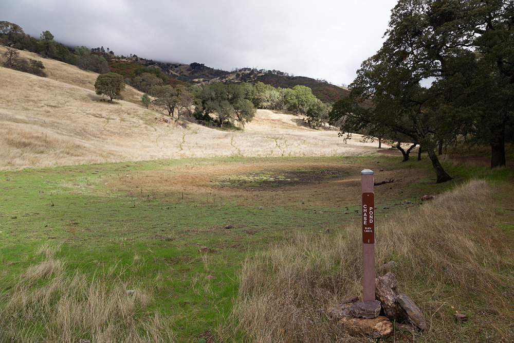 Mount Diablo State Park Curry Canyon Chase Pond Frog Pond-2.jpg