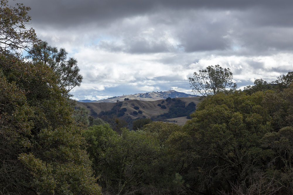 Mount Diablo State Park Curry Canyon Chase Pond Frog Pond-10.jpg