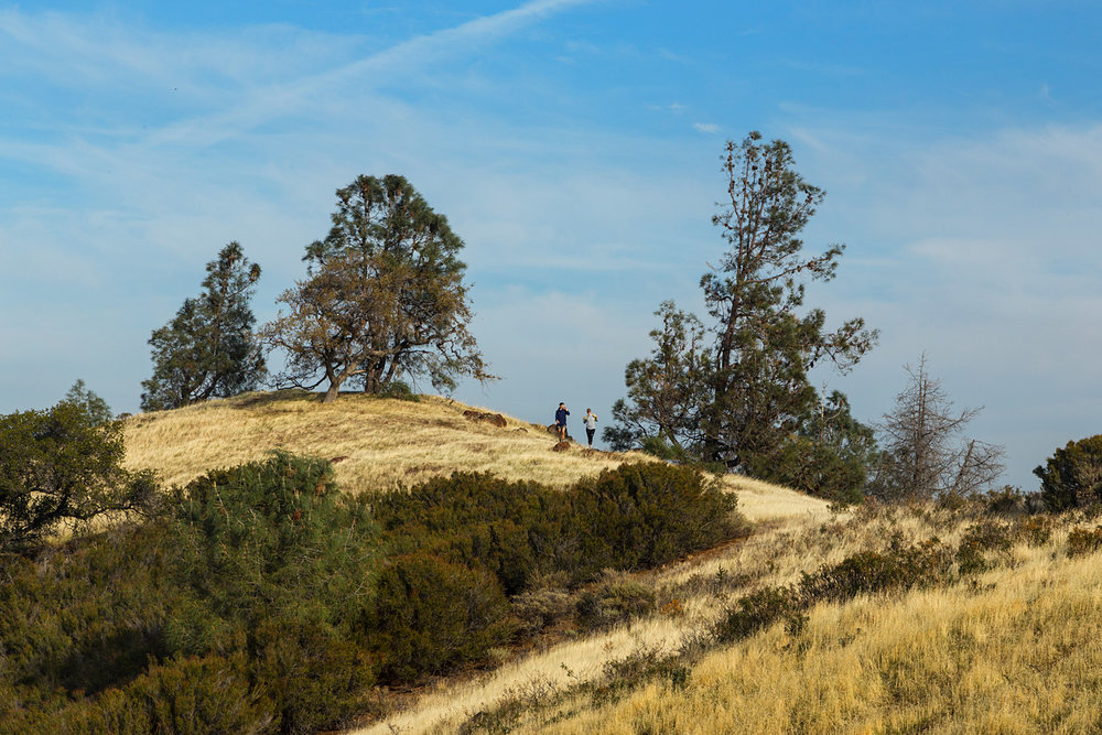 Eagle Peak Mount Diablo State park-41.jpg