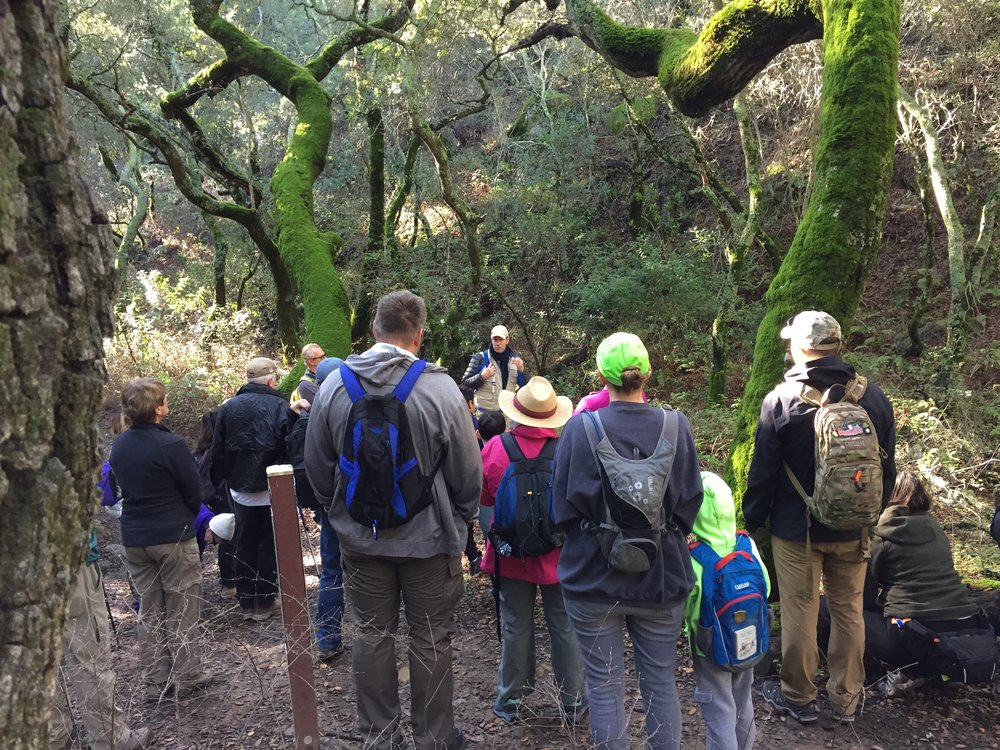 Leading a naturalist hike in Mount Diablo State Park