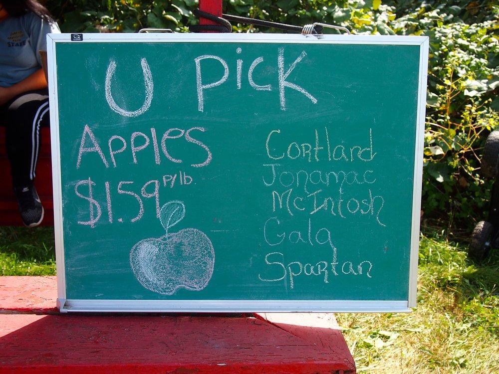 apple-picking-sign.JPG