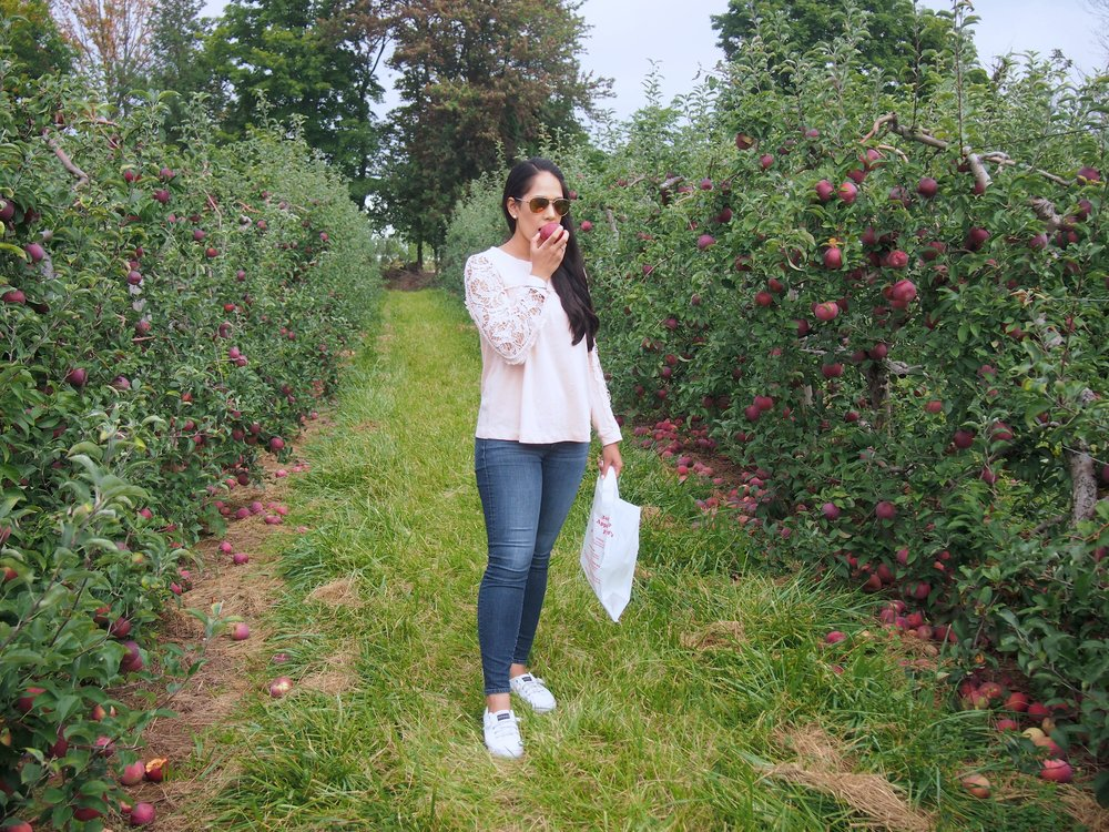 cute-fall-apple-picking-outfit-mygoldenbeauty-fashion-blog.jpg