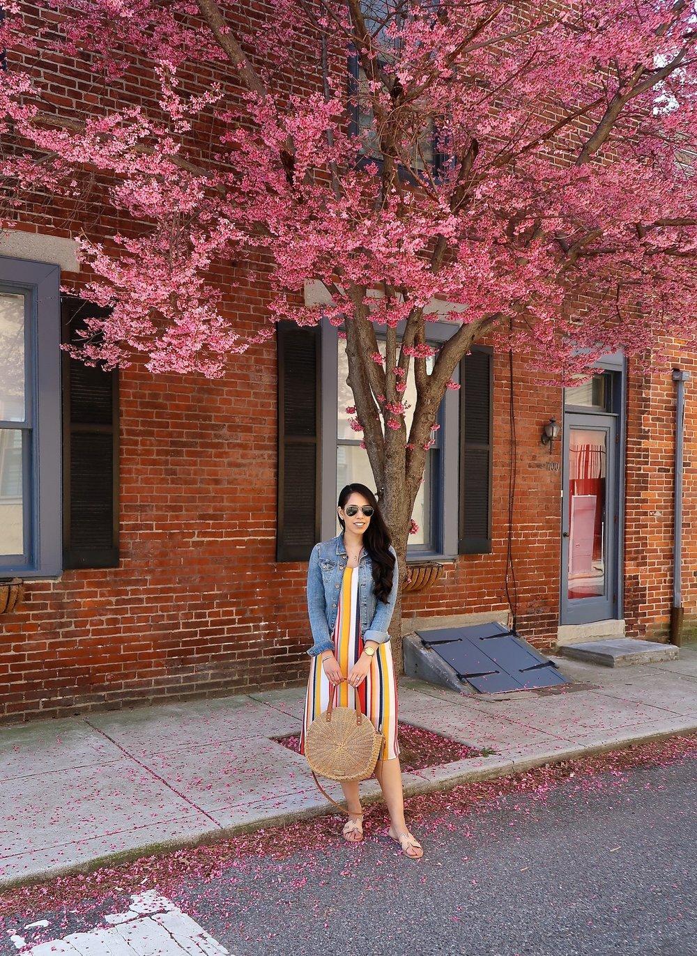spring-fashion-blogger-cherry-blossom-trees.jpg
