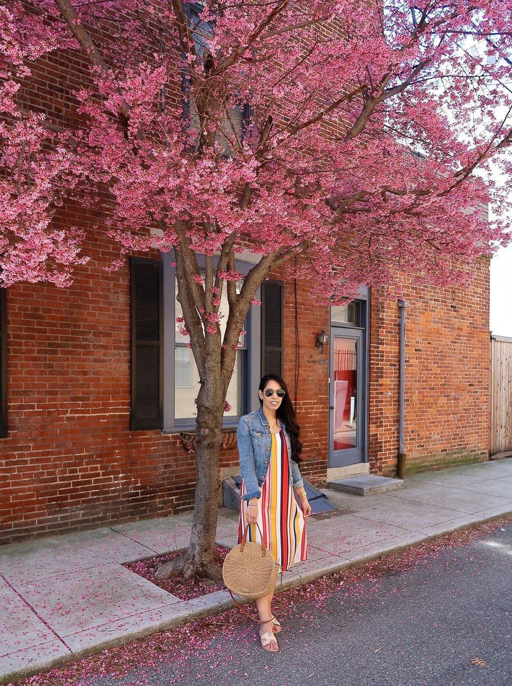 Colorful-Striped-Dresses-for-Spring.jpg