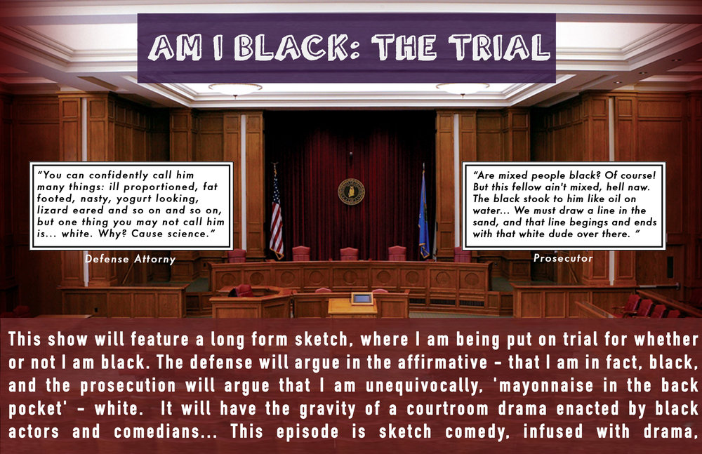 AM I BLACK TRIAL2.jpg