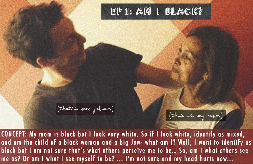AM I White1.jpg