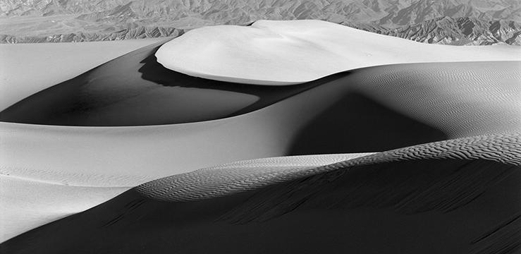Dune Forms Pan v1.jpg